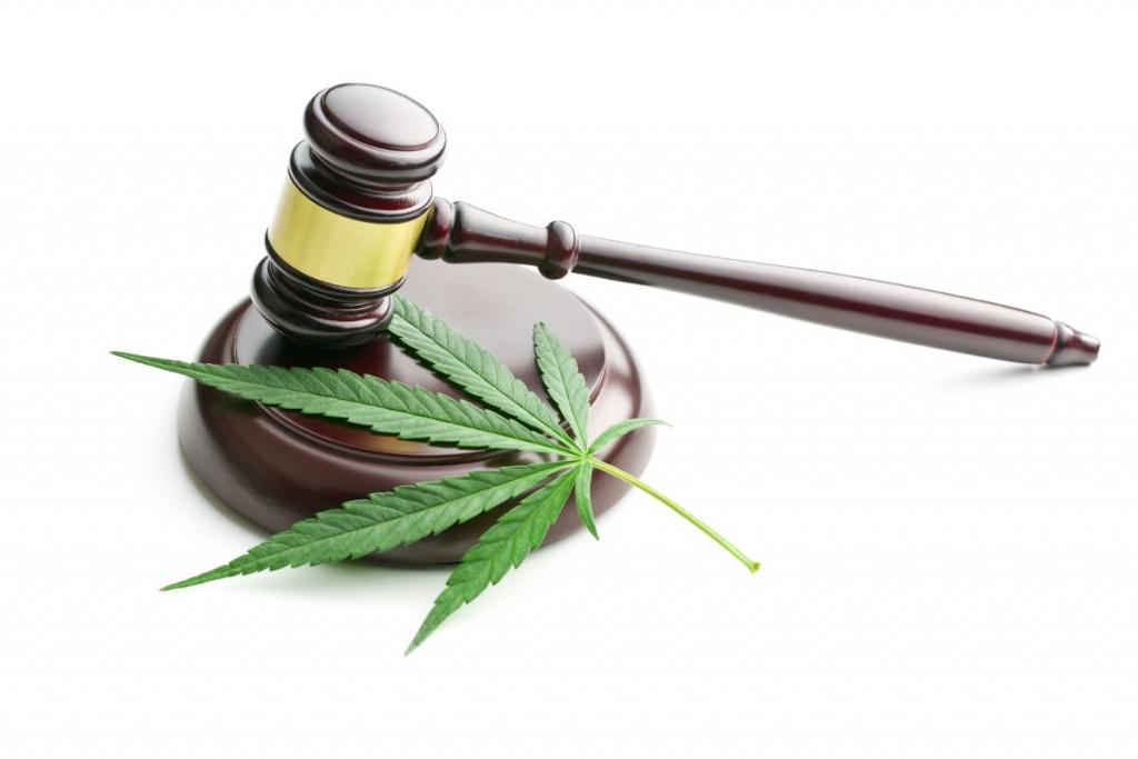 Montana Medical Marijuana Patients Make Political Headway